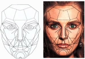 CROPface-symmetry-e1441912227693 (2)